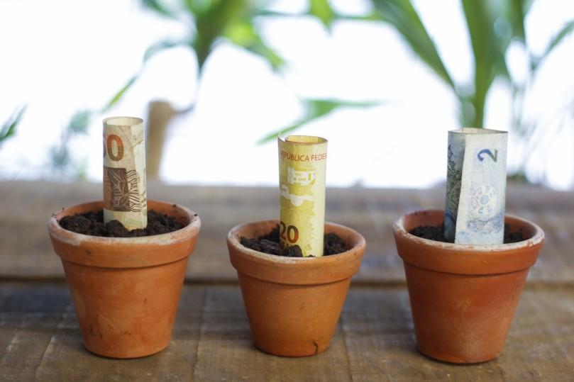vaso-com-dinheiro03daniel-castellano